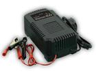 Зарядное устройство Кулон 100